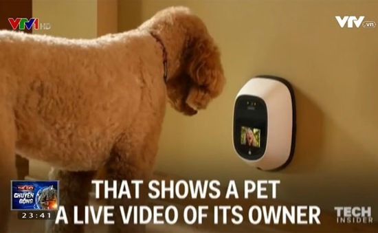 Etchatz - Thiết bị giúp những chú chó có thể nói chuyện với chủ