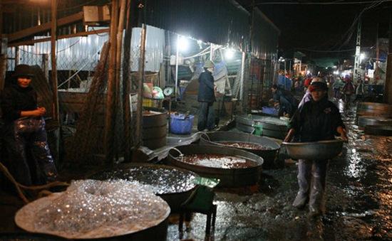 """Hiếm hàng ở chợ cá """"ma"""""""