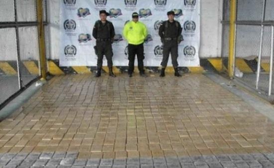 Tây Ban Nha, Italy tịch thu lượng ma túy lớn, bắt giữ 19 người