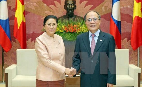 Chủ tịch Quốc hội Nguyễn Sinh Hùng tiếp Chủ tịch Quốc hội Lào
