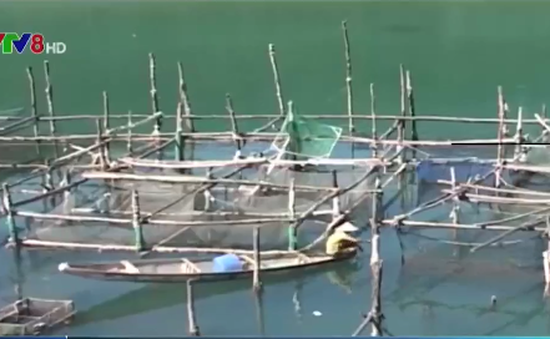 TT-Huế rà soát đối tượng hỗ trợ do sự cố môi trường trên biển