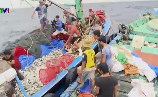 Tuyên truyền pháp luật biển cho ngư dân