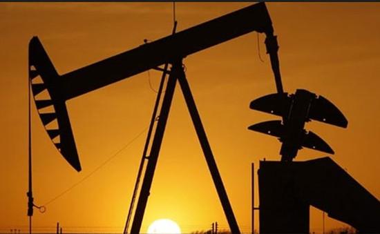 OPEC đàm phán với Iran về sản lượng dầu