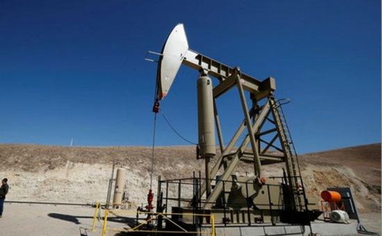 """Giá dầu thô thế giới đã """"thoát đáy"""""""