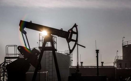 Giá dầu mỏ thế giới xuống dưới 28 USD/thùng