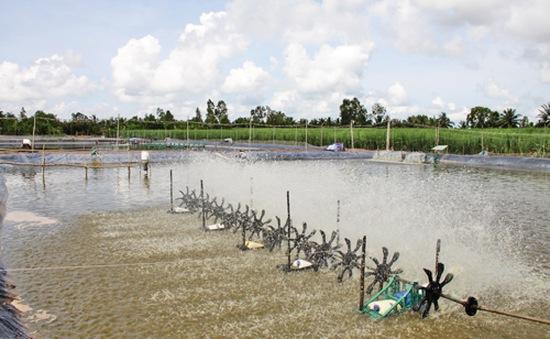 Đầu tư hạ tầng nông nghiệp thích ứng với biến đổi khí hậu