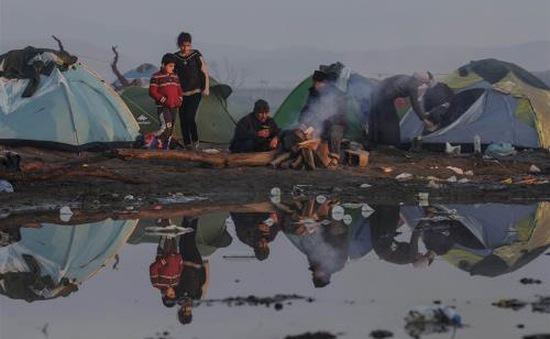 Giải tỏa trại tị nạn bất hợp pháp lớn nhất Hy Lạp