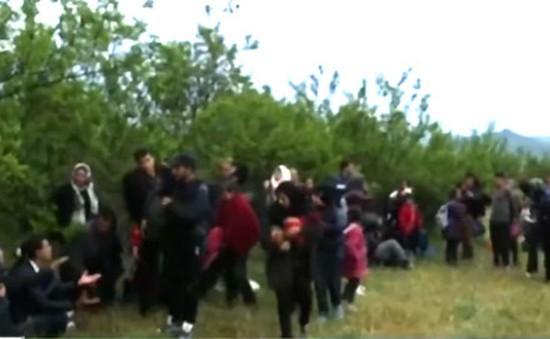 Người di cư tìm đường vượt rừng vào Macedonia