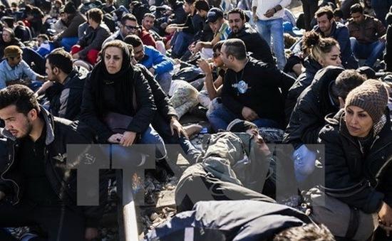 IOM: Số người di cư thiệt mạng trên biển gia tăng