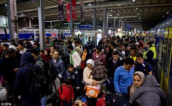 Đức hồi hương người tị nạn đến từ Bắc Phi