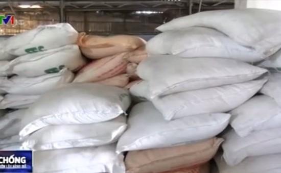 Bắt giữ trên 80 tấn đường cát không hóa đơn chứng từ tại An Giang