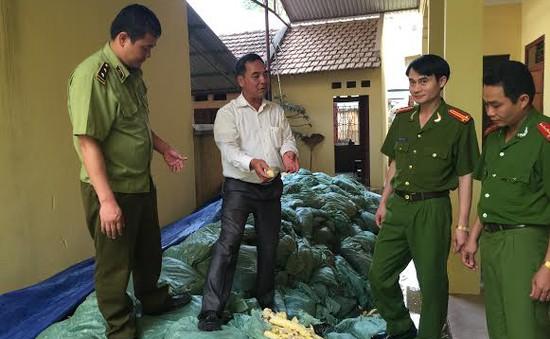 Phát hiện 22 tấn măng tẩm hóa chất độc hại tại Bắc Giang