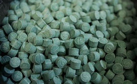 Ma túy Ecstasy trở lại châu Âu