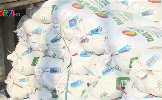 "TP.HCM mua 30.000 tấn muối ""cứu"" diêm dân Cần Giờ"