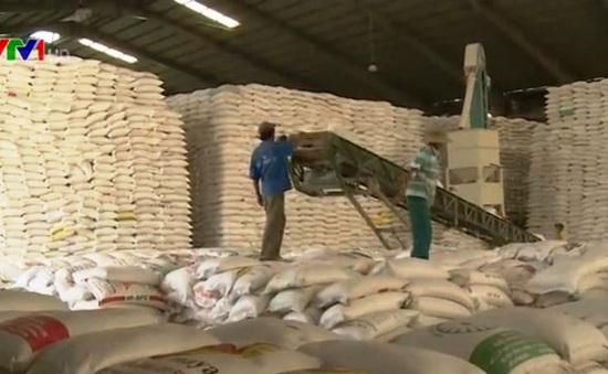 Gạo và cám gạo Việt Nam sẽ vào Trung Quốc theo đường chính ngạch