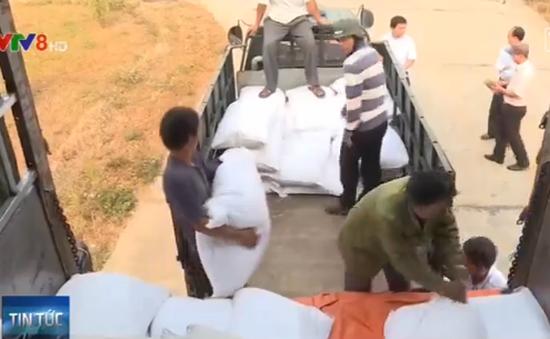 Thủ tướng chỉ đạo cấp 583 tấn gạo cho tỉnh Kon Tum
