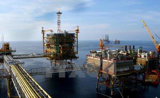 Giá dầu thô ngọt nhẹ đạt mức cao nhất trong 4 tháng