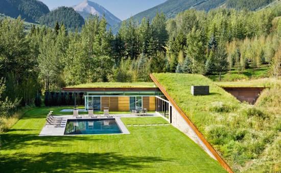Độc đáo căn nhà mái cỏ gần gũi thiên nhiên