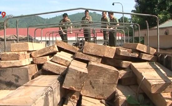 Phát hiện 55m3 gỗ lậu tại Đăk Lăk