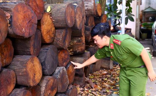 Bình Dương: Xử phạt đối tượng vận chuyển 301 khúc gỗ quý hiếm