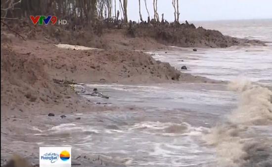 Tiền Giang khẩn trương bảo vệ đê biển Gò Công