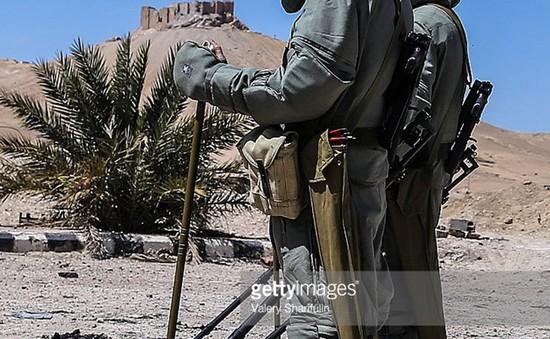 Quân đội Nga nỗ lực rà phá bom mìn tại Palmyra, Syria