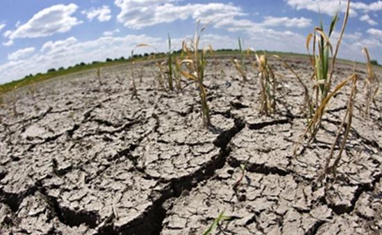 Biến đổi khí hậu - một trong những nguyên nhân dẫn đến nội chiến ở Nam Sudan