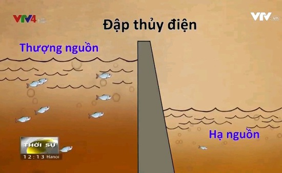 Nguyên nhân nào khiến dòng sông Mekong suy thoái?