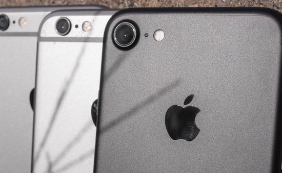 Sử dụng iPhone 7 tại những cơ quan này sẽ khiến bạn mất việc ngay lập tức