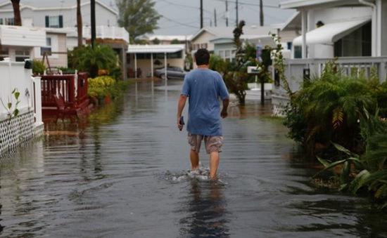 Bão Hermine đổ bộ bang Florida (Mỹ), hàng nghìn người bị ảnh hưởng