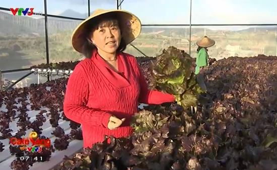 Người phụ nữ thành công với kỹ thuật trồng rau sạch bằng thủy canh
