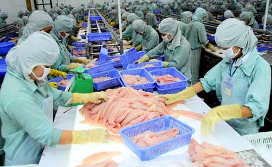 DN xuất khẩu cá tra hưởng lợi lớn từ FTA Việt Nam - EAEU