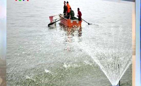 Lắp đặt hệ thống cung cấp ôxy hòa tan ở Hồ Tây
