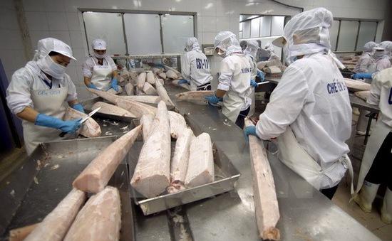 Hoạt động sản xuất tại Việt Nam ở mức cao nhất trong 18 tháng