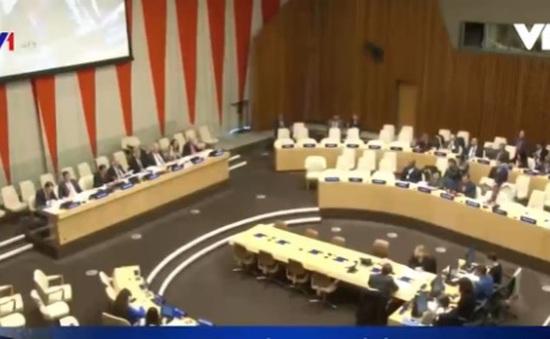Việt Nam dự phiên thảo luận của Ecosoc về lồng ghép chính sách