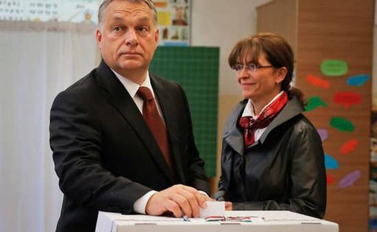 Tỷ lệ đi bầu quá thấp, trưng cầu dân ý tại Hungary thất bại