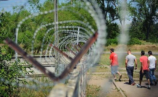 Hungary ban bố tình trạng khủng hoảng vì người tị nạn