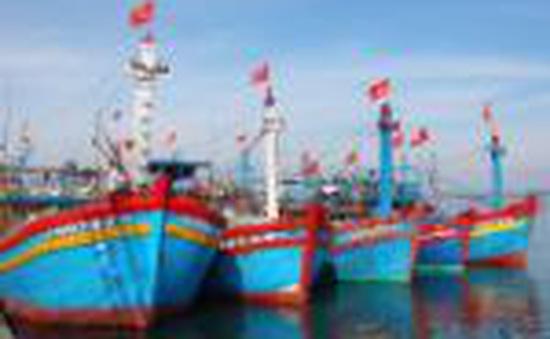 Khánh Hòa, Quảng Ngãi kêu gọi tàu thuyền về nơi trú bão