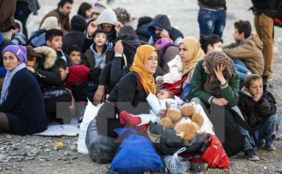 Nguy cơ khủng hoảng nhân đạo tại biên giới Hy Lạp - Macedonia
