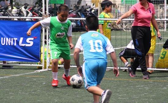 Sôi động vòng Chung kết Festival bóng đá học đường 2015 - 2016