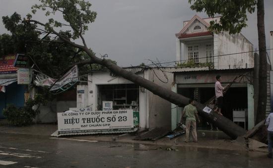 TP.HCM: Dông lốc quật ngã nhiều cây xanh, nhiều nhà dân tốc mái