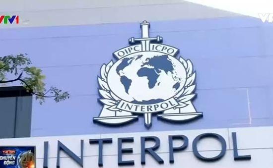 Interpol điều tra đường dây cá cược bóng đá tại Singapore