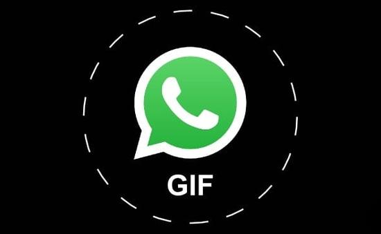 WhatsApp sẽ sớm hỗ trợ đính kèm ảnh GIF khi chat
