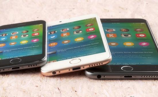 iPhone màn hình 4 inch sẽ có tên iPhone 5e