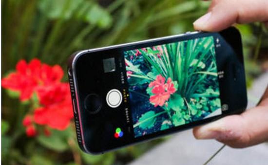 iPhone 4 inch mới dự kiến mang về cho Apple 5,5 tỷ USD