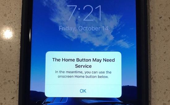 iPhone 7 bất ngờ gặp sự cố bị liệt phím Home