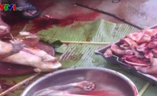Công khai giết thịt, buôn bán cao khỉ trái phép