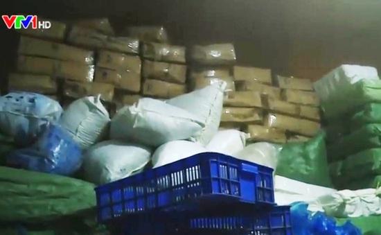Quảng Trị tiêu hủy gần 70 tấn cá tồn kho
