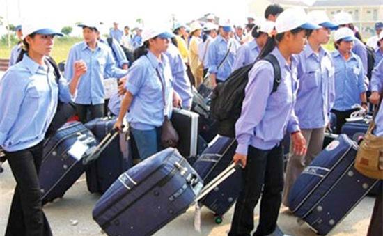 Xử phạt lao động bất hợp pháp tại Hàn Quốc: 2 năm chưa phạt được ai