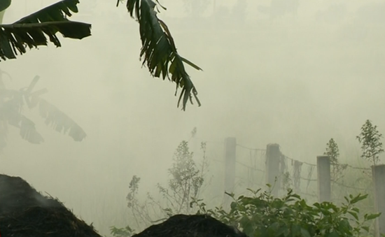 Báo động tình trạng ô nhiễm do đốt rơm rạ vùng ngoại ô Hà Nội